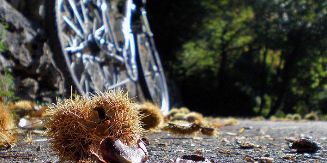 Il fascino di pedalare in autunno